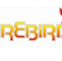 Firebird Boilers looks for telephony solution in remote Gaeltacht area